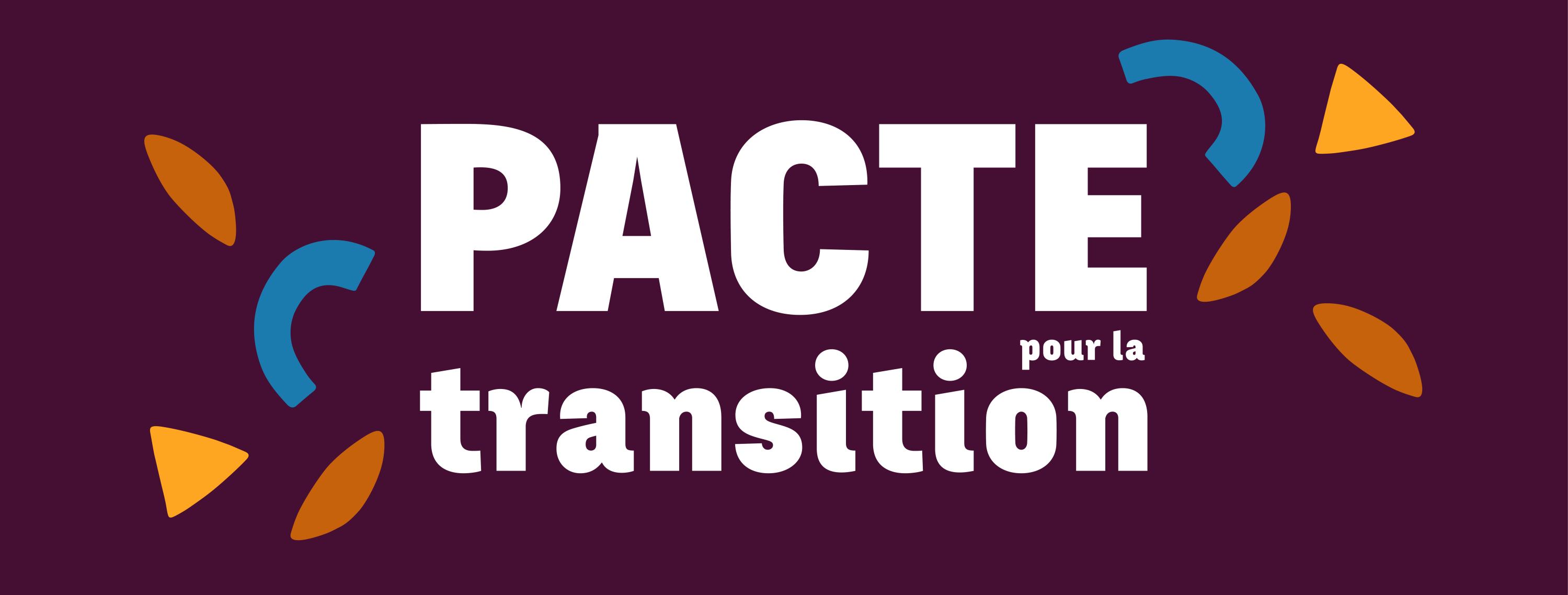 Jusqu'au 28 février : COmmunectons la démocratie avec le Collectif  pour une Transition Citoyenne !